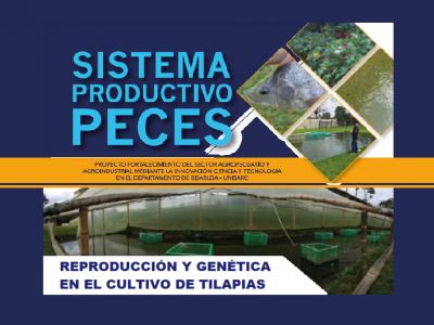 REPRODUCCIÓN Y GENÉTICA EN EL CULTIVO DE TILAPIAS