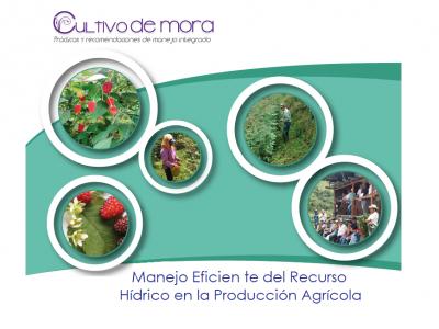 MANEJO EFICIENTE DEL RECURSO HÍDRICO EN LAPRODUCCIÓN AGRÍCOLA