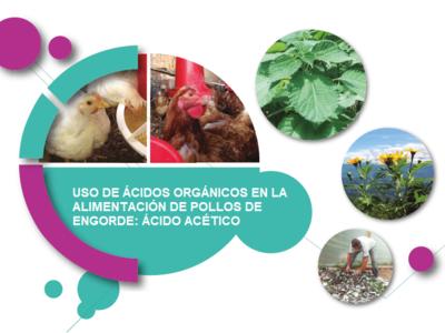 Uso de Ácidos Orgánicos en la Alimentación de Pollos de Engorde: Ácido Acético