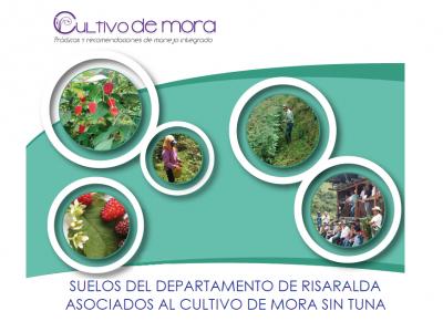 SUELOS DEL DEPARTAMENTO DE RISARALDA ASOCIADOS AL CULTIVO DE MORA SIN TUNA