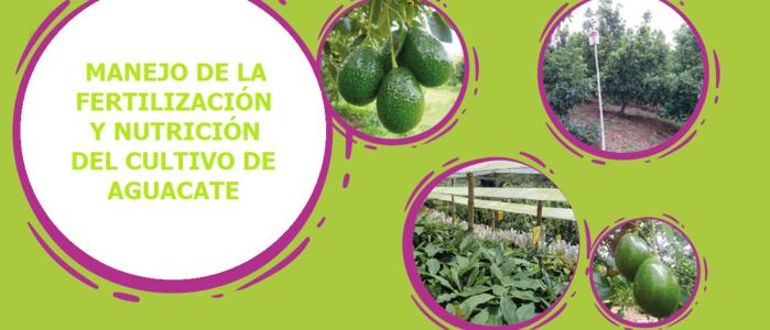 Manejo de la Fertilización y Nutrición del Cultivo de Aguacate
