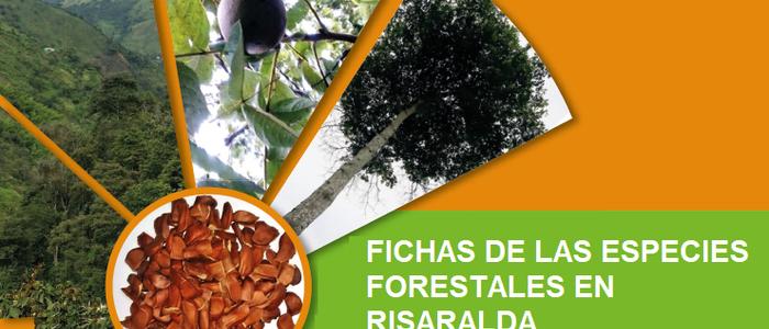 Fichas de las Especies Forestales en Risaralda